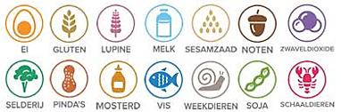 Voedselallergie of specifieke dieetwensen/ food allergy or special requirements Oranjebal